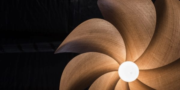 Playing in the shadows, Tasmanian Timber is brought to light