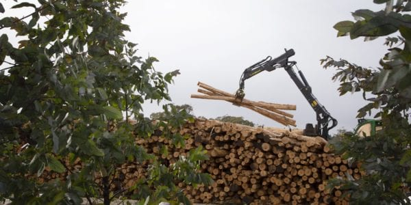 From log to LOGR, new technology allows Tasmania's harvested timber to be tracked in real-time